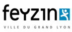 Feyzin webmaster freelance